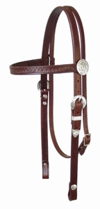 Circle Y Fan and Silver Headstall