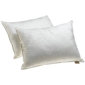 Dream Supreme Plus 100% Gel Filled Pillows, Set of 2